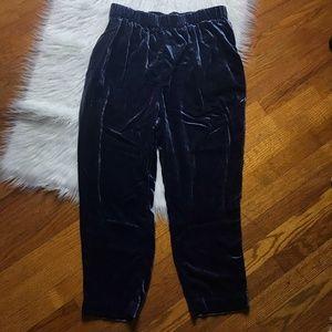 Ett:Twa Anthro Blue Velvet Jogger Pants